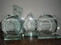 Awards from Motorola